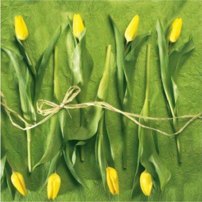Fresh Tulips Luncheon Napkins