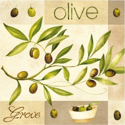Olive Garden Luncheon Napkins
