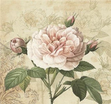 Vintage Rose with Buds Luncheon Napkins